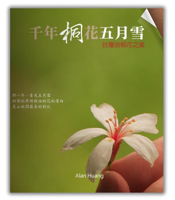 千年桐花五月雪電子書
